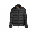 Parajumpers - Dillon sheen parcil jacket PSJ